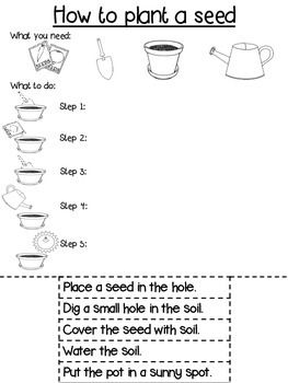 the bean exercise instructions