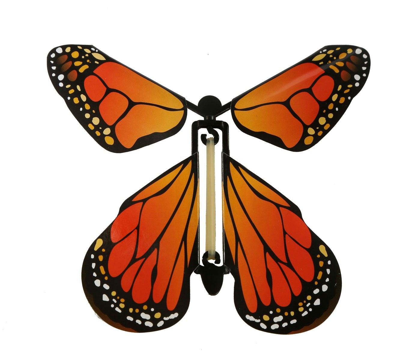 insect lore butterfly instructions